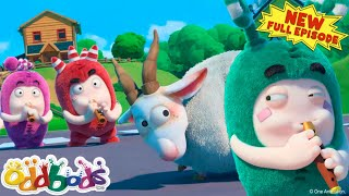 ODDBODS | The Pied Piper Of Oddsville | NEW Full Episode | Cartoons For Kids