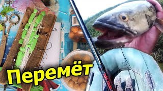 Перемет на змееголова и сома Моменты поклёвки огромных хищных рыбин на жерлицы и закидушки