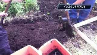 友人がいきなりやってきて私の家の庭に勝手に畑を作りました。