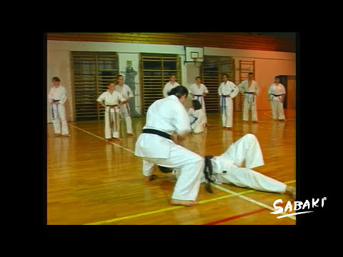 Tai Sabaki Karate