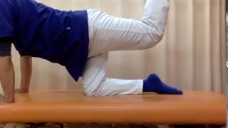 【腰痛予防】多裂筋のトレーニング【ちよかわ接骨院】