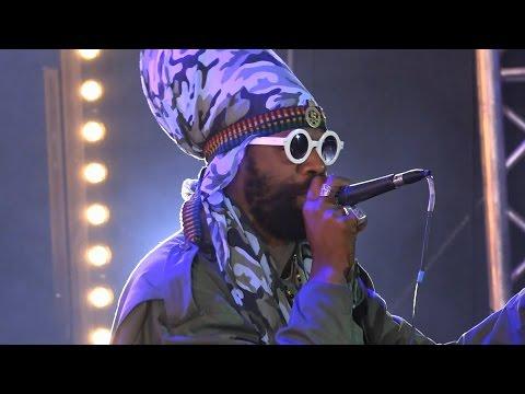 Zion Train & Fitta Warri (Jam.) @ Ostróda Reggae Festival 2014