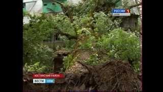 Дерево упало на дом на ул. Чекменёва(, 2012-05-28T10:55:24.000Z)