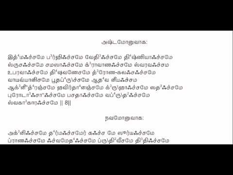 RudramChamakam with Tamil Lyrics to chant along