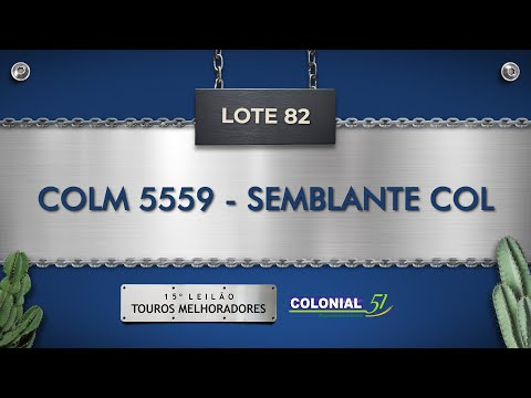 LOTE 82   COLM 5559