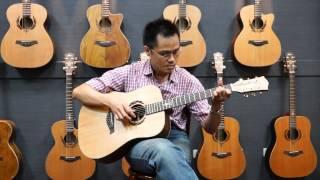 fina guitarsfd-8351 ( 2 )
