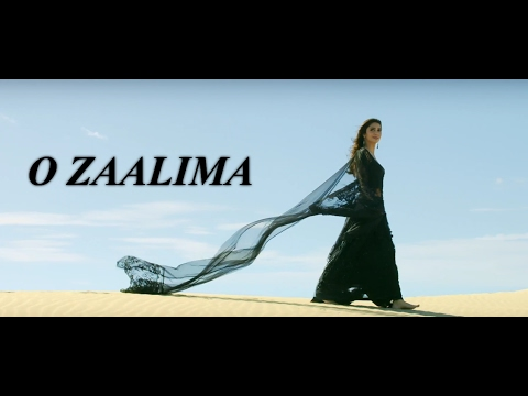 Zaalima | Video Lyrics | Remix | Shah Rukh Khan & Mahira Khan