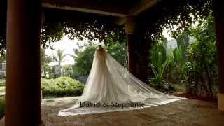 """I Love You with All I Have"" David & Stephanie (Wedding Trailer)"