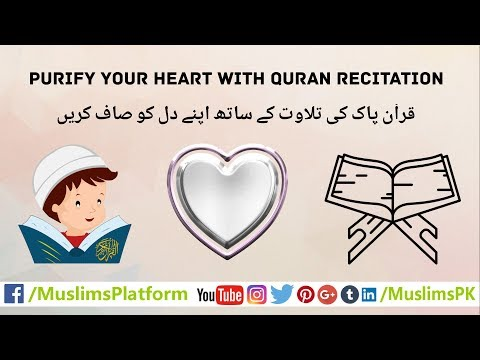 Purify your heart with Quran Recitation - Islamic Videos by MuslimsPK
