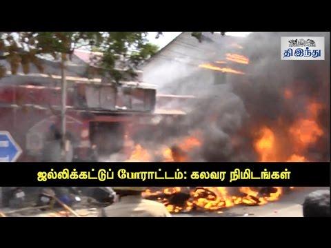 Jallikkattu Protest Turns Violent: Riot in Chennai | Tamil The Hindu