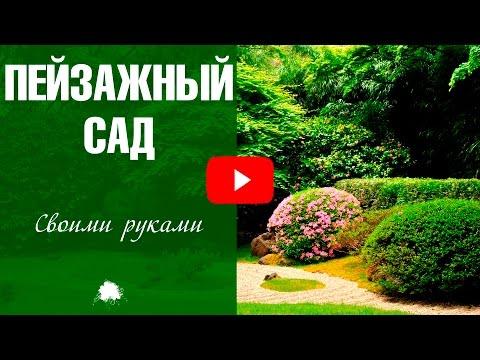 Ландшафтный дизайн маленького двора частного дома фото