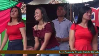 Download lagu Arnanda Musik Vol 25 Full Remix live Di Selagai bersama oksastudio