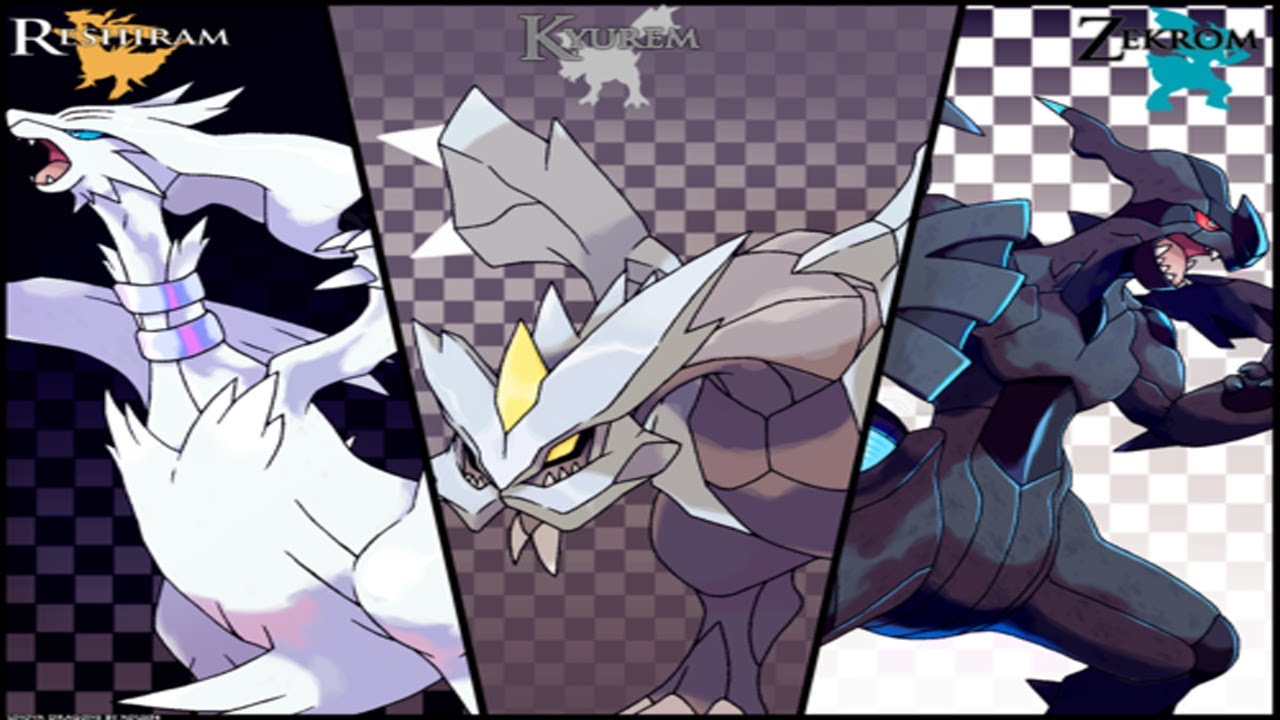 zekrom reshiram combined - photo #14