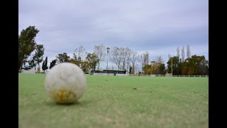 Trelew Rugby Club cumple 50 años