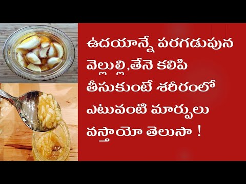 Benefits Of Garlic And Honey On An Empty Stomach Weight Loss Tips In Telugu Health Tips In Telugu