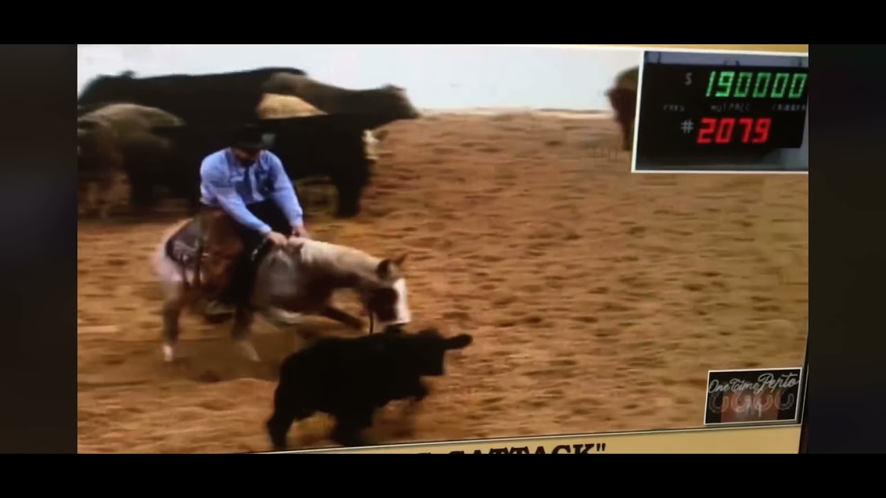 Metallic Cattack - selling at 2017 NCHA Western Bloodstock Sale