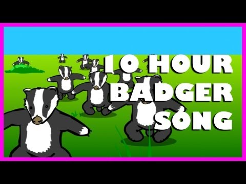 Badgers | 10 Hours