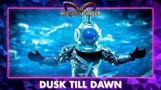 Duiker - 'Dusk Till Dawn'   The Masked Singer   VTM