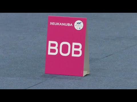 World Dog Show 2017.Dachshund.Best of Breed