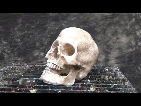 Resin Casting Tutorial: Skull Cast