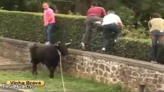 funny videos 2017 people fails bull fighting try not to laugh or grin