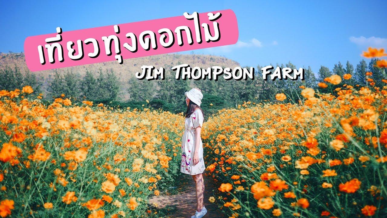 เที่ยวทุ่งดอกไม้ จิม ทอมป์สัน ฟาร์ม JIM THOMPSON FARM