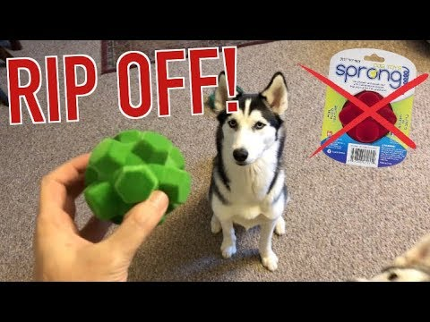 Toys For Siberian Huskies - The Good, The Bad, & The SPRONG!