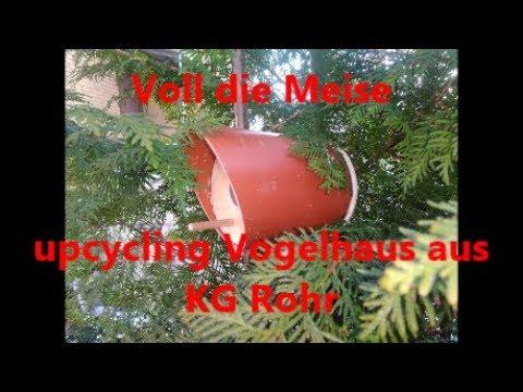 Voll Die Meise Upcycling Vogelhaus Nistkasten Bruthohle Aus Kg Rohr