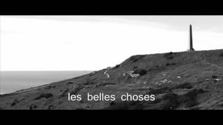Les Belles Choses - Gaetan Roussel Cover - Laury