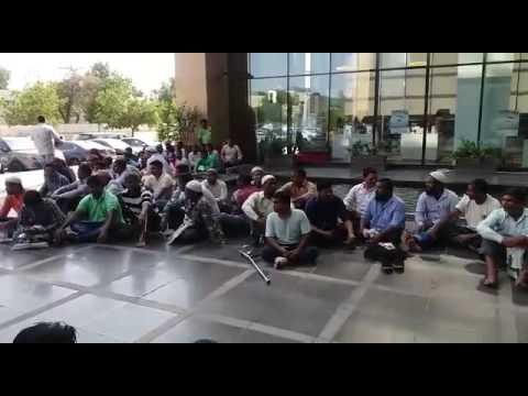 Saudi bin laden group KSA employees