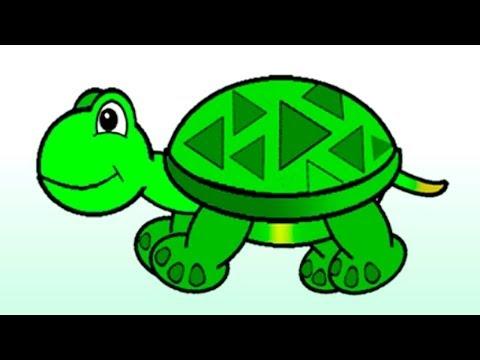 Мультфильм про зеленую черепашку