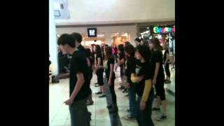 thriller flash mob ithaca mall