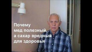 Почему мед полезный, а сахар вредный для здоровья Alexander Zakurdaev