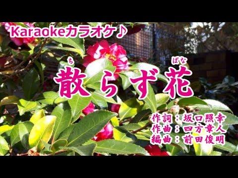 【新曲】散らず花 西方裕之 カラオケ '19/1/9発売