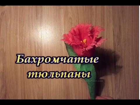 БАХРОМЧАТЫЕ ТЮЛЬПАНЫ ИЗ БУМАГИ / Fringed tulips