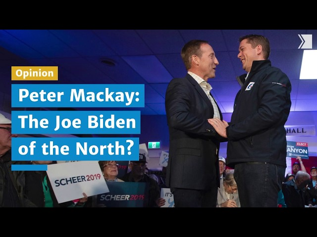 Peter Mackay seems to be plotting to replace Andrew Scheer. He's one of those baffling Canadian public figures. The mystery is: how does he dare go out in public after some of the things he's done?