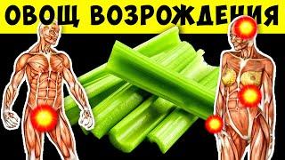 постер к видео И что Будет, если кушать Сельдерей каждый день в течение 7 дней