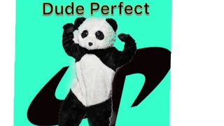 Dude Perfect Panda Revealed! (NOT CLICKBAIT!)