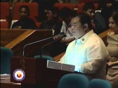 Rep. Rene Relampagos Privilege Speech (11/15/2010) [part 2 of 2]