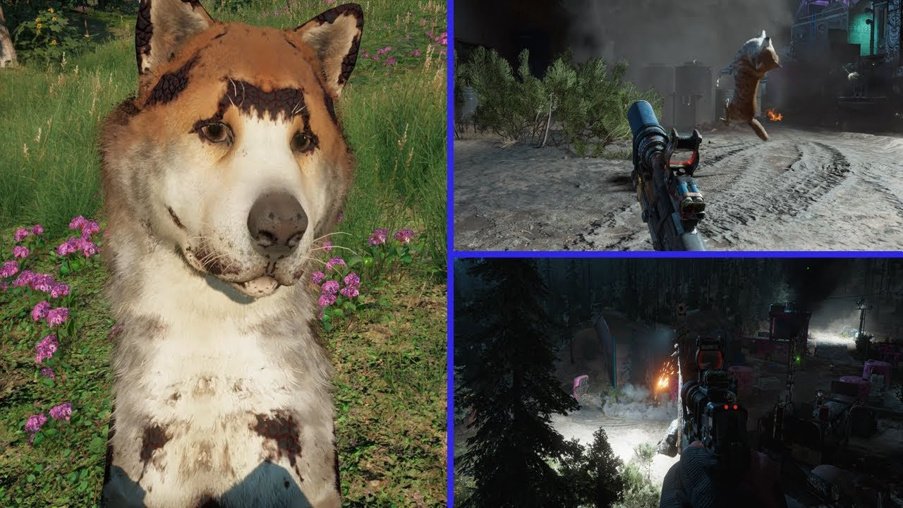 Far Cry New Dawn Mythbusters Strapping Explosives To Your Dog Stop Drop Roll Youtube