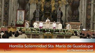Homilia en la Solemindad de Sta. María de Guadalupe (12/12/2018) HD