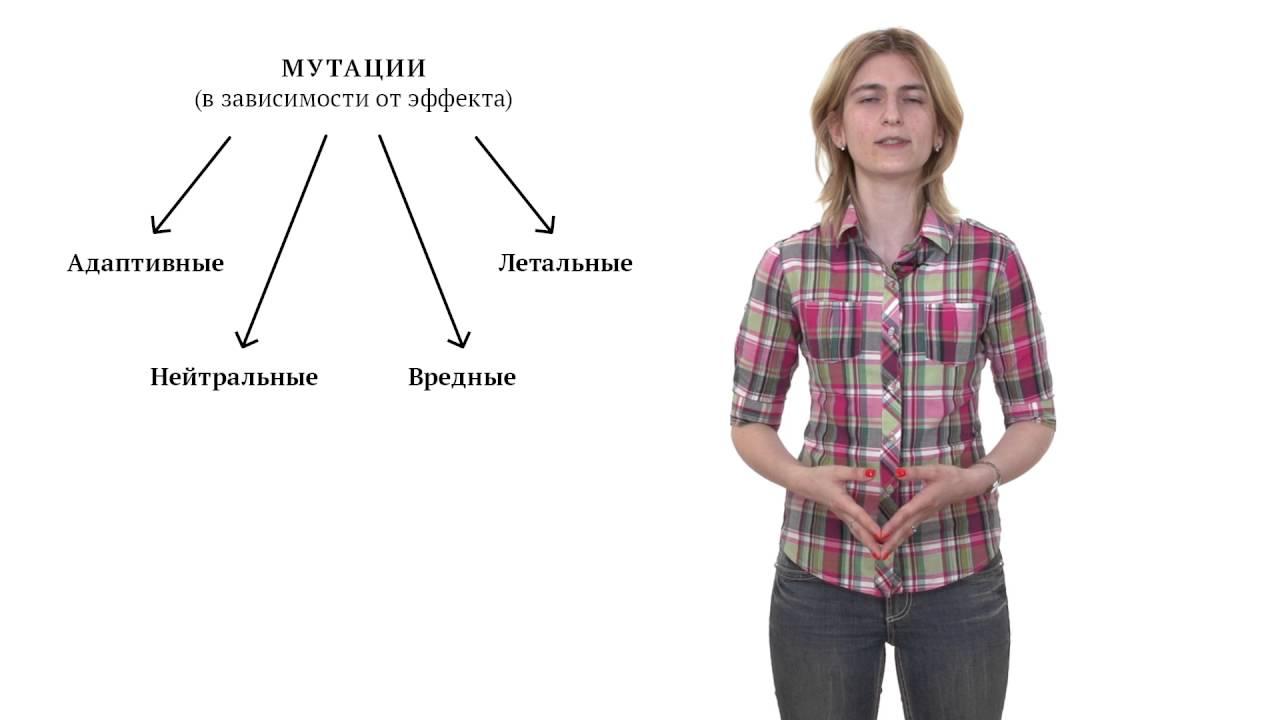 Мутации и мутагенез. Решение генетических задач - 13