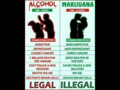 THE REAL TRUTH ABOUT CANNABIS & WHY ITS ILLEGAL 😱