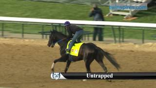 Untrapped 2017 Kentucky Derby Contender 5.03