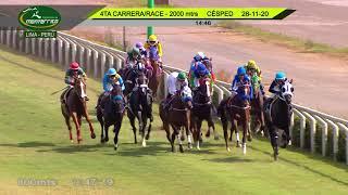 Vidéo de la course PMU PRIX HANDICAP