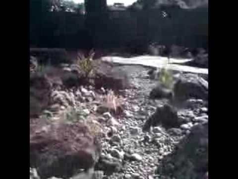 landscaper landscaping contractor landscape design rohnert park petaluma santarosa healdsburg sonoma
