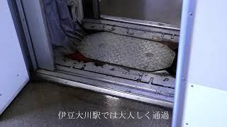 185系特急踊り子108号乗車記録 8月19日 伊豆急行線
