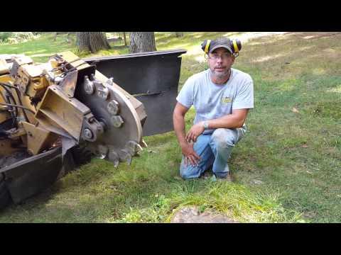Stump grinding MA