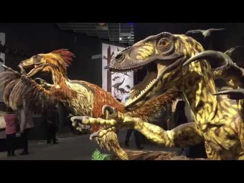 Dinosaurier im Naturkundemuseum Münster