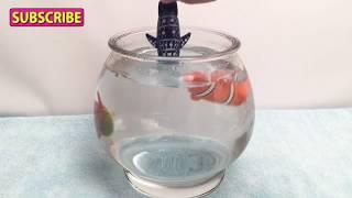 Lil' Fishys Motorized Water Pets Unboxing Aquarium Fish Bowl - CoolToys